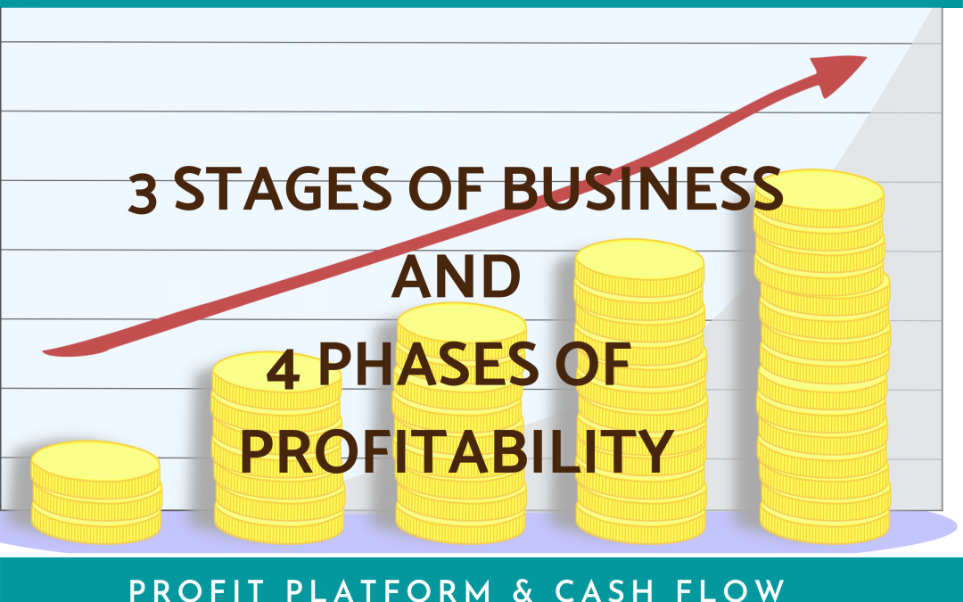 3 Stages of Business and 4 Phases of Profitability